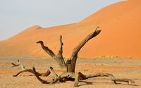 Namib Desert [8] wallpaper 3840x2160 jpg