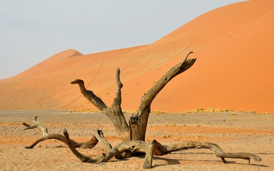 Namib Desert [8] wallpaper
