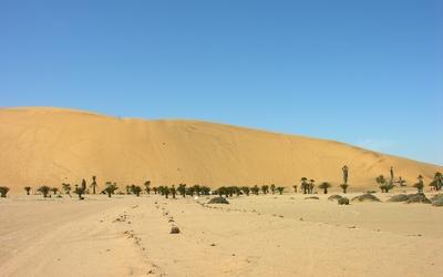 Namib Desert [11] wallpaper
