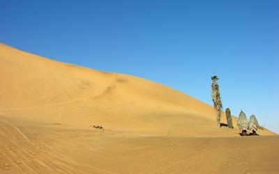 Namib Desert [14] wallpaper