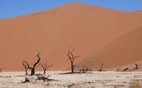 Namib Desert [10] wallpaper 1920x1200 jpg