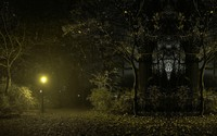 Night in the park wallpaper 1920x1080 jpg
