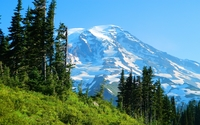 Nisqually Glacier wallpaper 2560x1600 jpg