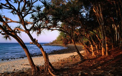 Noosa National Park wallpaper