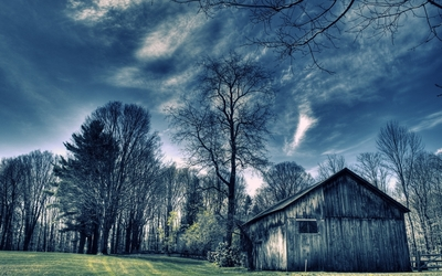 Old barn in the forest wallpaper