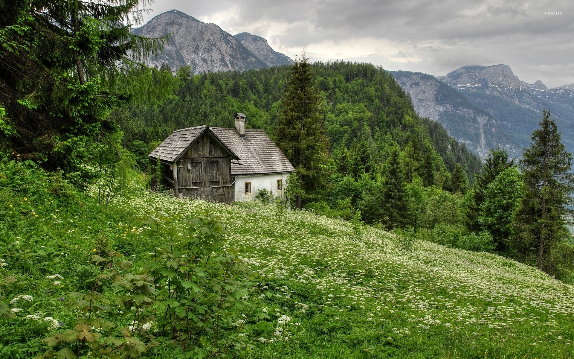 Old house in the forest mountain wallpaper nature for Classic house wallpaper