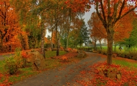Park in fall wallpaper 1920x1200 jpg
