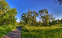 Park through Minnesota wallpaper 2880x1800 jpg