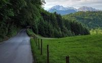 Path through the forest wallpaper 1920x1200 jpg