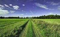 Path through the grass to the lake wallpaper 1920x1200 jpg