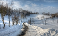 Path through the snow wallpaper 2560x1600 jpg