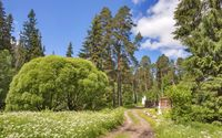 Path towards the mansion wallpaper 2560x1600 jpg