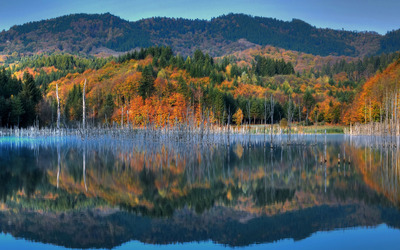 Perfect reflection of the autumn mountain wallpaper