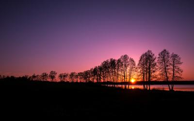 Purple dusk wallpaper