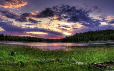 Purple sunrise wallpaper