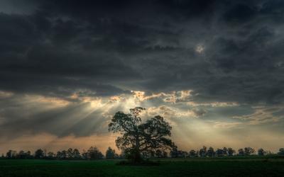 Rain of sunshine through dark heavy clouds wallpaper