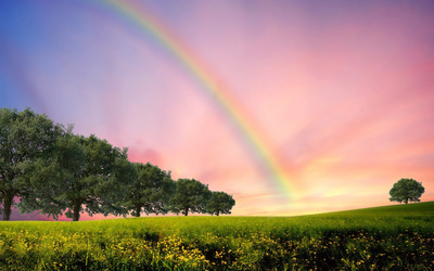 Rainbow over the field wallpaper