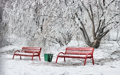 Red benches in the snowy park wallpaper