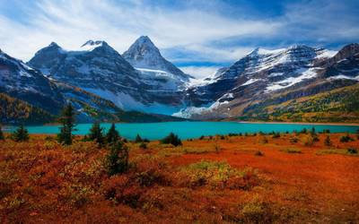 Red nature in Mount Assiniboine Provincial Park wallpaper