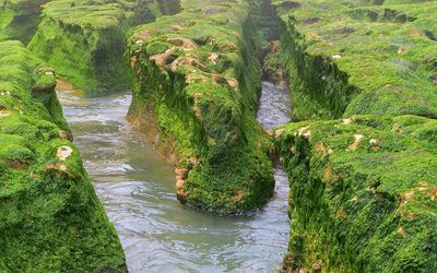 River flowing through the mossy cliffs Wallpaper