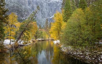 River through the rocky mountain wallpaper