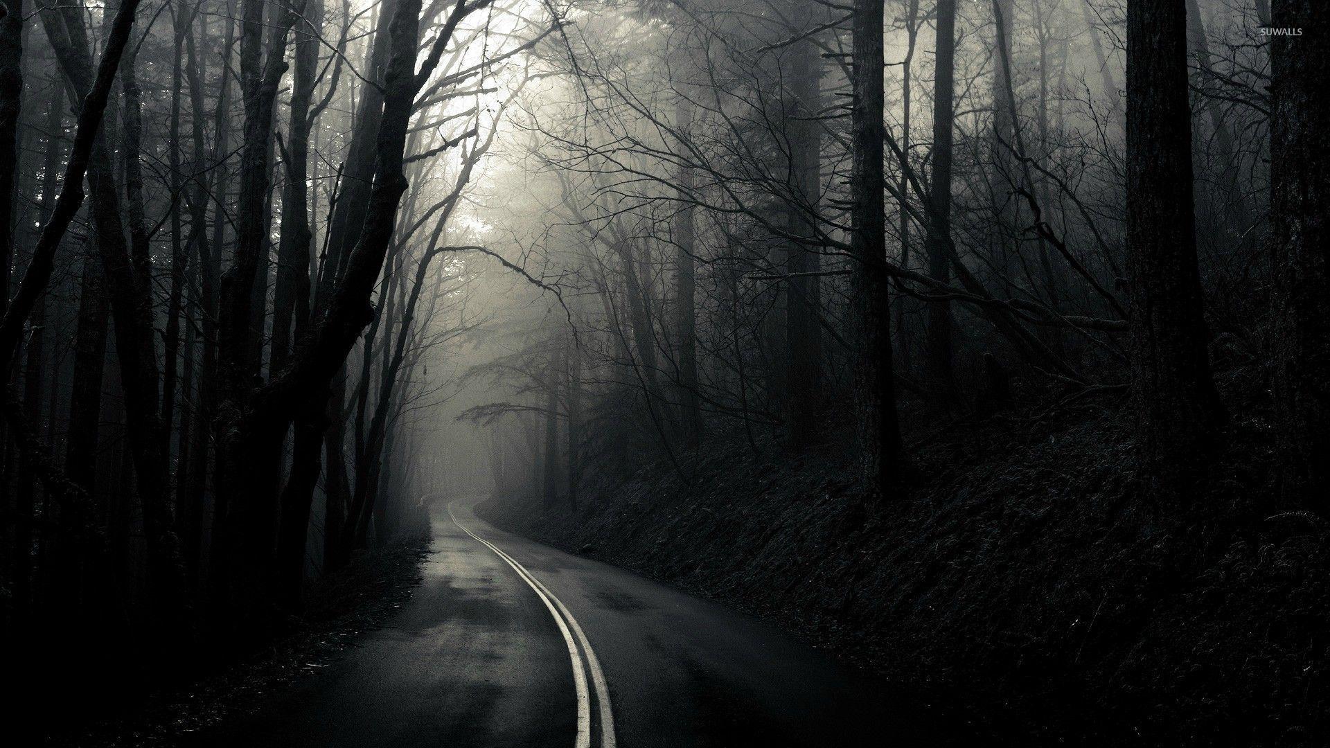 Road Through The Dark Woods Wallpaper