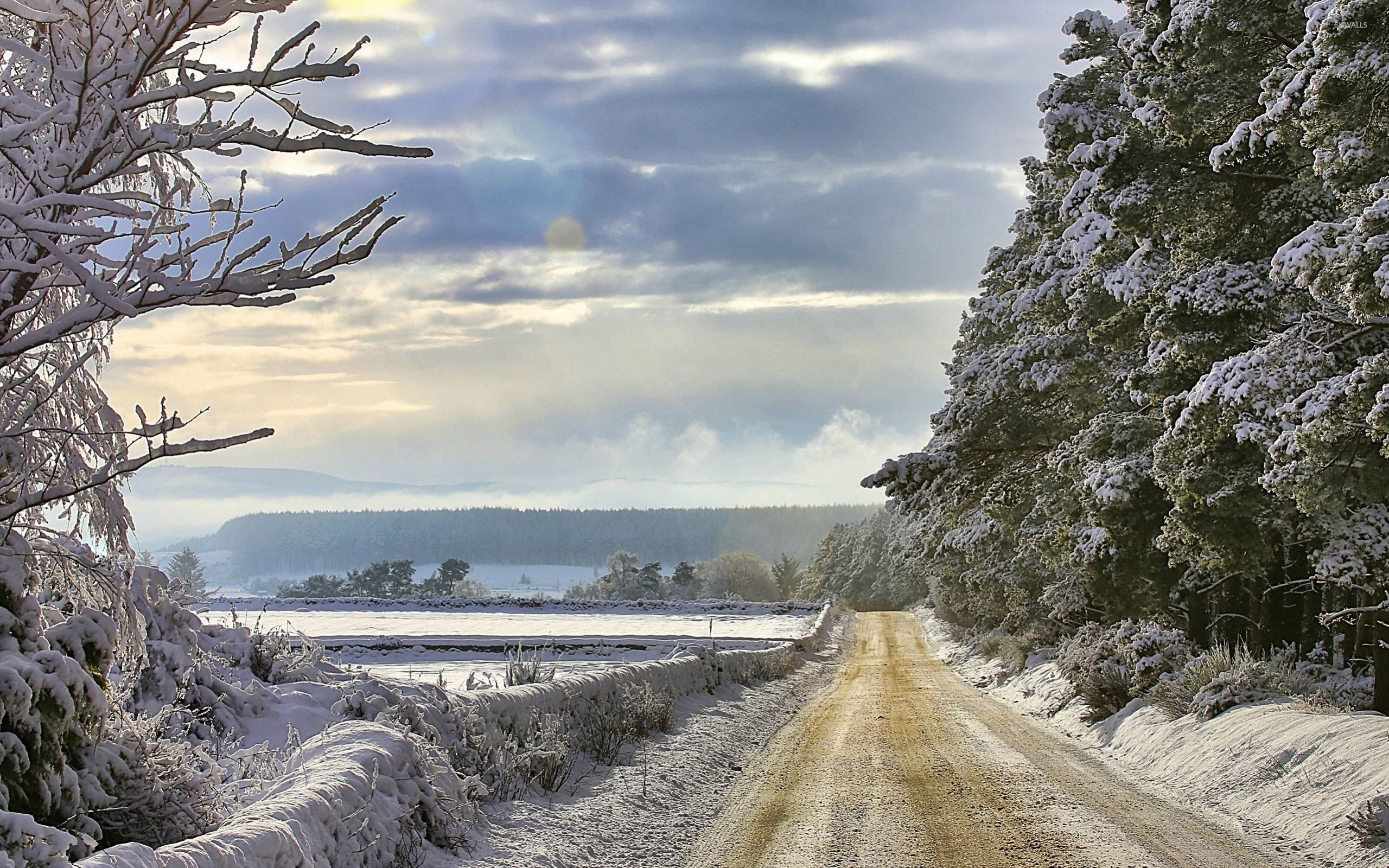Road through the snowy countryside wallpaper nature for Countryside wallpaper for walls