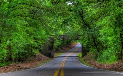 Road under the stone forest bridge wallpaper