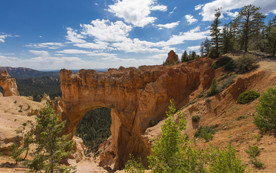 Rocky bridge in Bryce Canyon National Park wallpaper