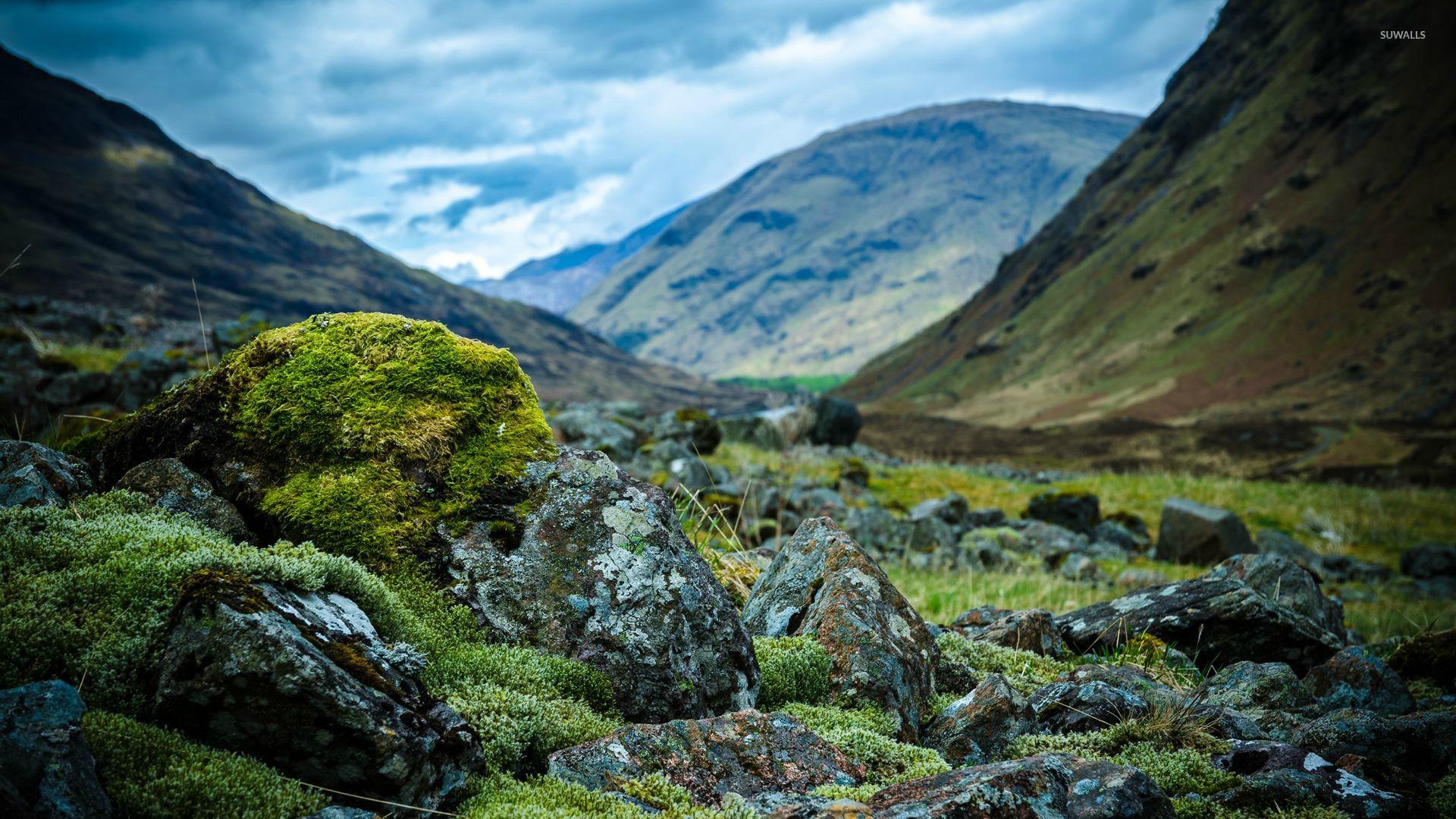 Rocky mountain wallpaper - Nature