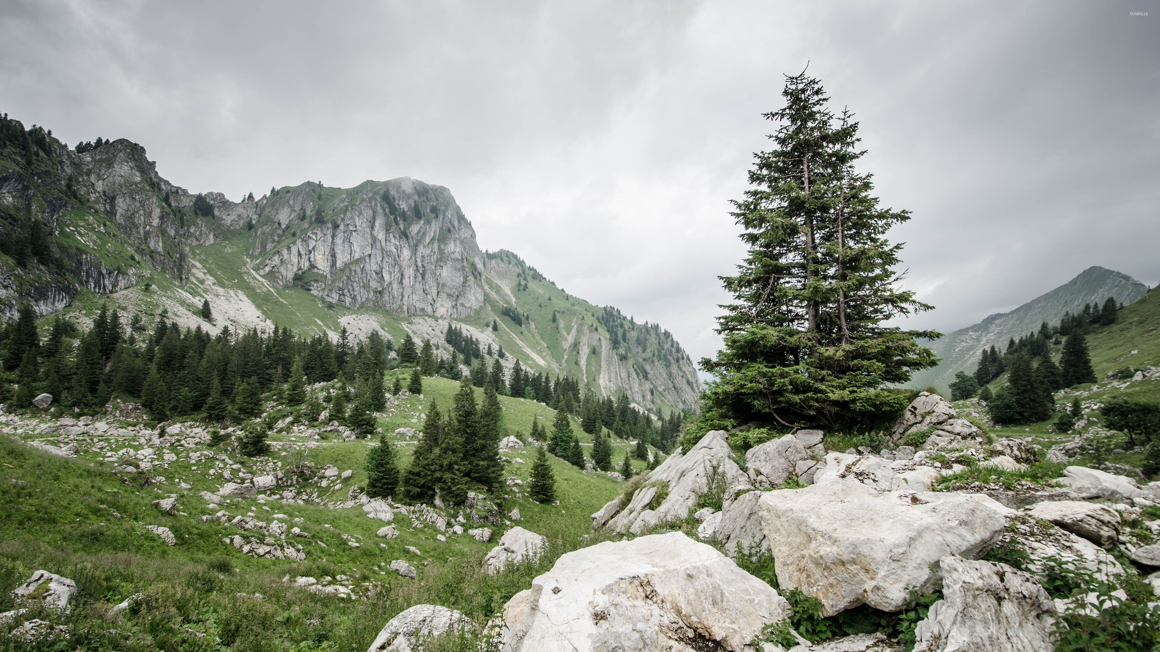nature mountain rocky - photo #7