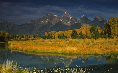 Rocky mountains behind the autumn forest wallpaper