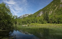 Rocky peak behind the forest reflecting in the lake wallpaper 1920x1200 jpg
