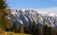 Rocky peaks rising from the mountain forest wallpaper 2560x1600 jpg