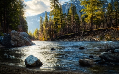 Rocky river shore in the forest wallpaper