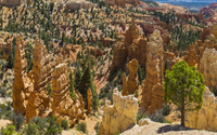 Rocky statues in Bryce Canyon National Park wallpaper 2880x1800 jpg