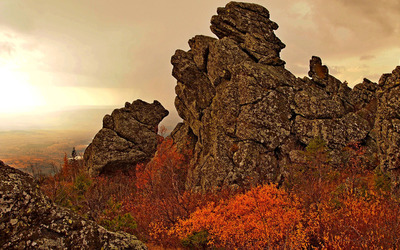 Rusty trees on rocky cliff wallpaper