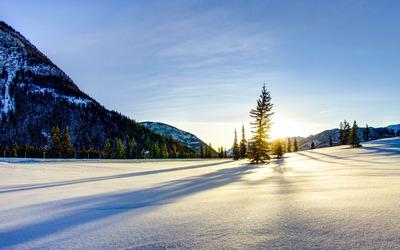 Serene snow wallpaper