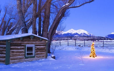 Small bright Christmas tree near the hut Wallpaper