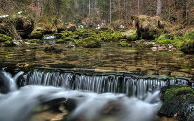 Small forest waterfall wallpaper