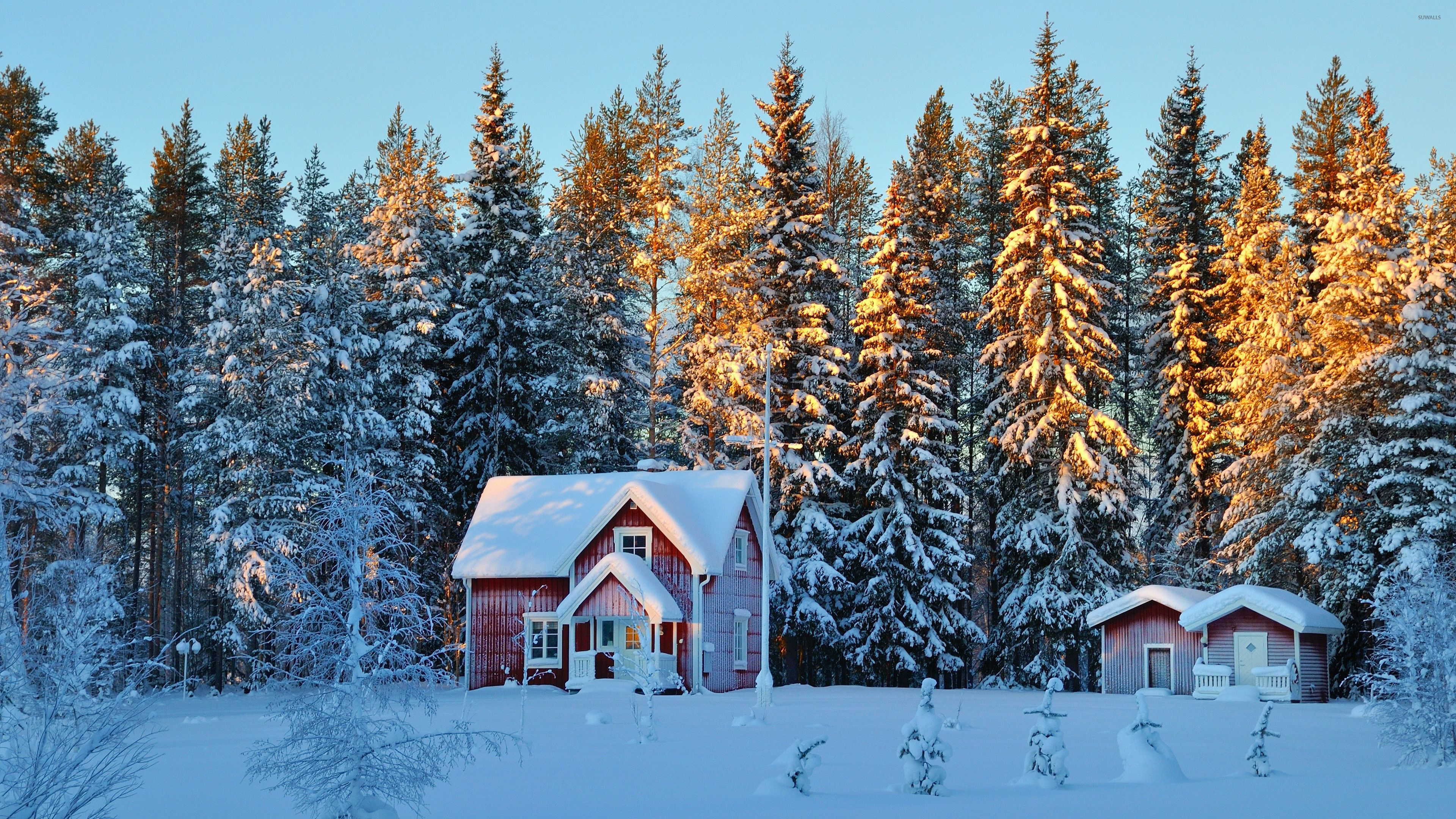 Small Houses In The Snowy Forest Wallpaper Nature