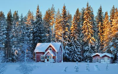 Small houses in the snowy forest wallpaper