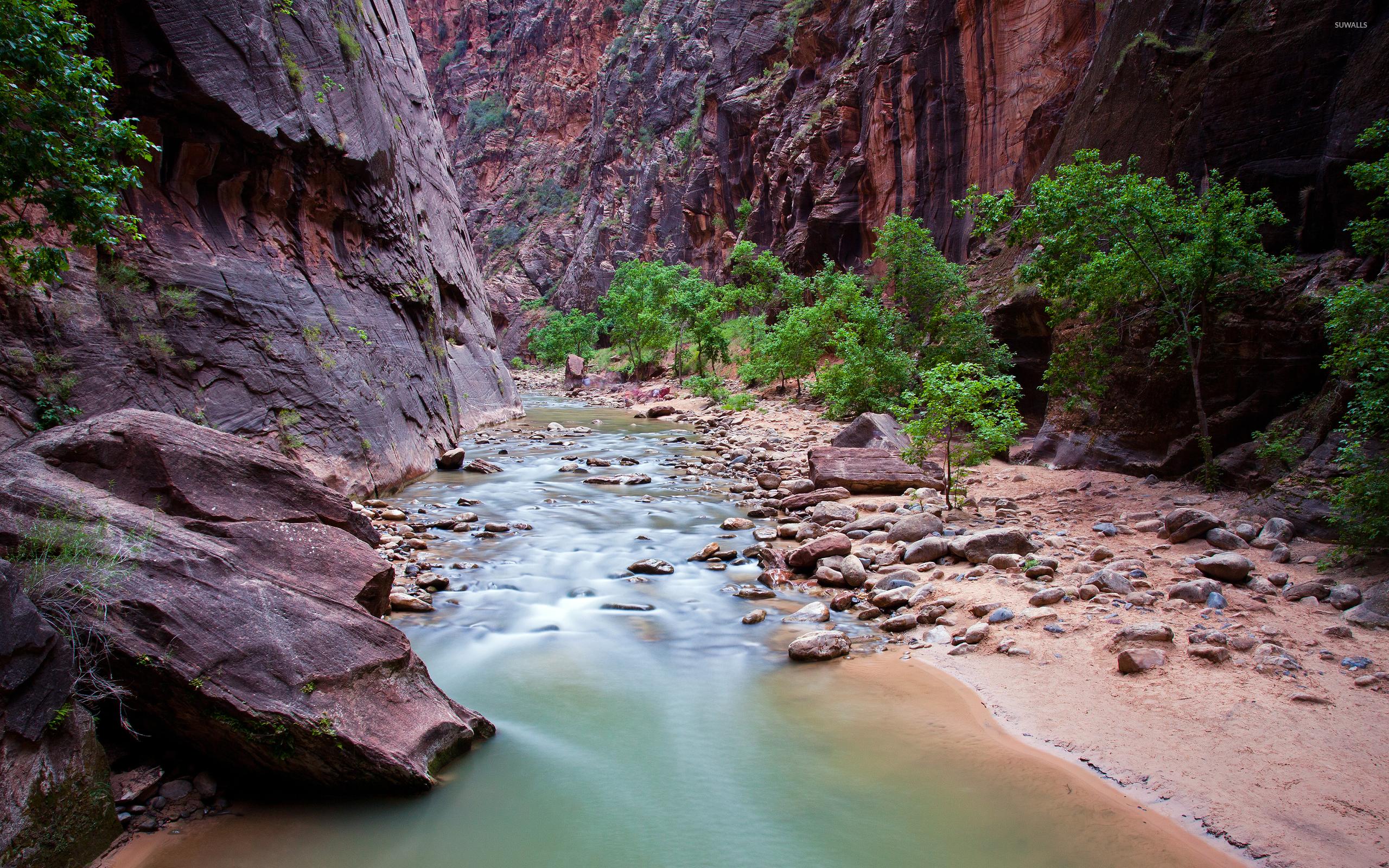 small river stream in zion national park wallpaper