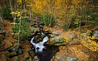 Small river through the forest wallpaper 2880x1800 jpg