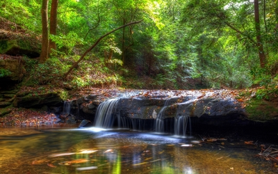 Small waterfall in the green forest wallpaper