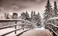 Snowy bridge wallpaper 2560x1600 jpg