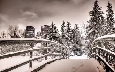 Snowy bridge wallpaper