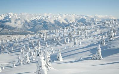 Snowy mountainside wallpaper