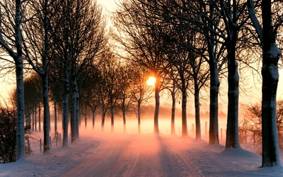 Snowy path towards the orange sunset wallpaper