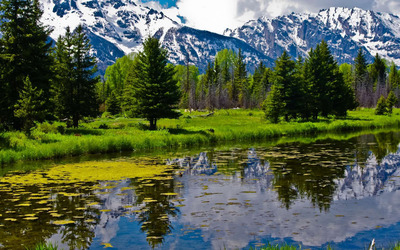 Snowy peaks by the green nature wallpaper